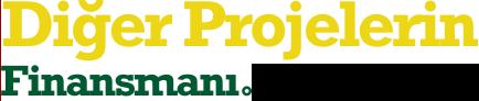 Diğer Projelerin Finansmanı
