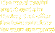 The most useful credit cards in Turkey that offer the best solutions for your company!