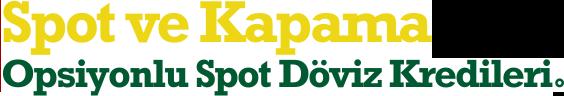 Spot ve Kapama Opsiyonlu Spot Döviz Kredileri
