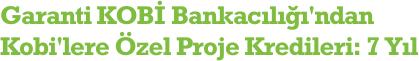 Garanti KOBİ Bankacılığı'ndan Kobi'lere Özel Proje Kredileri: 7 Yıl