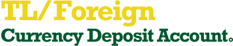 TL/Foreign Currency Deposit Account